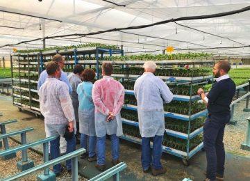 Grupo Cristalplant recibe en sus instalaciones a profesionales semilleristas internacionales