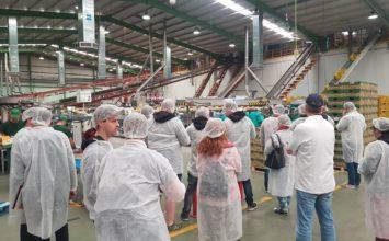 Un grupo de estudiantes alemanes visita El Ejido para conocer su modelo de producción y comercialización agrícola