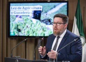 La Ley de Agricultura andaluza perseguirá la venta por debajo del precio de mercado