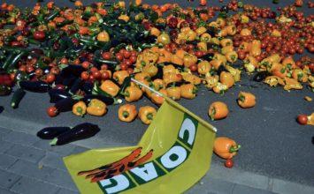 Coag solicita al nuevo Gobierno central que atienda la demanda de los agricultores en materia de rebaja fiscal