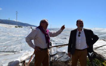 Alrededor de 12 hectáreas de invernaderos de Vícar, afectadas por la fuerte tormenta de granizo
