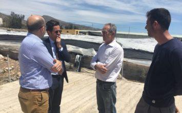 La tormenta de granizo destroza en El Ejido 17 hectáreas de invernaderos