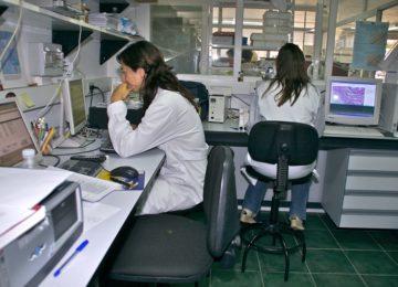 La Junta participa en un proyecto para conseguir la tercera generación de doradas mejoradas genéticamente