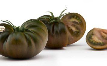 Cooperativa La Palma presentará en Fruit Attraction sus nuevas experiencias en tomate con sabor más intenso