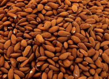 La sequía pone en jaque el cereal y almendro del norte granadino