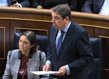 España defiende que la reforma de la PAC concluya después de conocer el presupuesto para la agricultura y la ganadería
