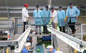 El alcalde de El Ejido visita las nuevas instalaciones de Vicasol en El Ejido