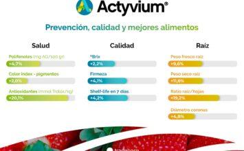 Los cultivos de fresas tratados con bioestimulantes mejoran sus valores nutricionales, su calidad y vida útil