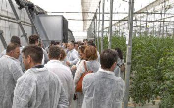 Verdita reúne a sus agricultores para compartir la excelencia del Tomate ADORA®