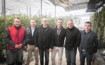 La plantación de 'setos verdes' en los invernaderos mejoralos cultivos y genera un entorno más limpio