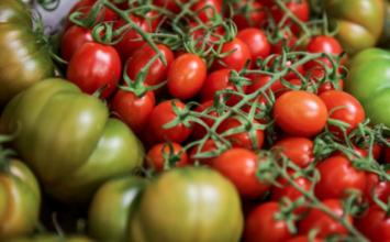 Fruit Logística presenta la diversidad saludable en la ruta de conveniencia y de productos orgánicos