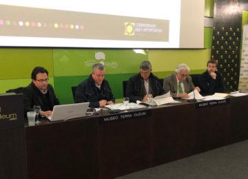 Andalucía produce hasta diciembre 555.363 toneladas de aceite de oliva, algo más de un 40% de lo estimado en el aforo oficial