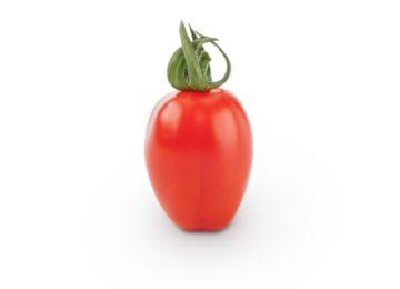 El cherry pera Ferdinand de Semillas Fitó brilla por su sabor, calidad y producción