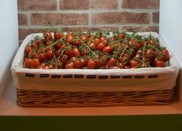 La industria de alimentación alinea su estrategia con los Objetivos de Desarrollo Sostenible
