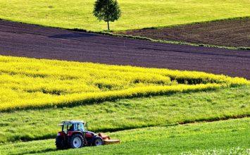 La Junta inicia un nuevo pago de 43,9 millones de euros a la agricultura ecológica y agroambientales