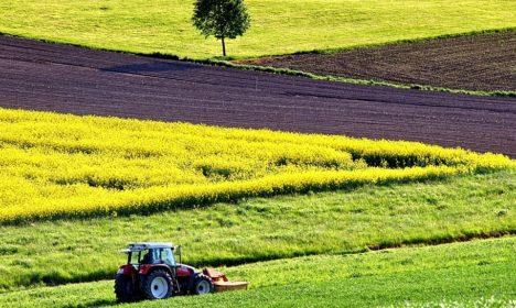 Alemania, España y Francia comparten su ambición para la futura PAC: una Política Agrícola Común más verde y simple