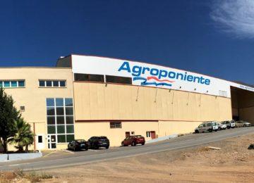 Grupo Agroponiente cerró 2018 con 24 centros logísticos