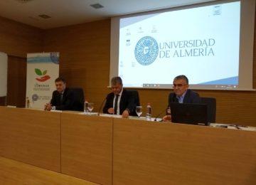 El Cimedes de la UAL aborda el empuje a los sectores productivos de Almería