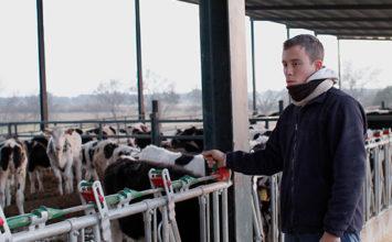 """UPA: """"Los industriales españoles son followers de los franceses y se están cargando la ganadería láctea de aquí"""""""