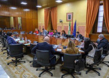 Los jóvenes agricultores andaluces podrán recibir el 25% de las ayudas con solo justificar el inicio del proceso de instalación