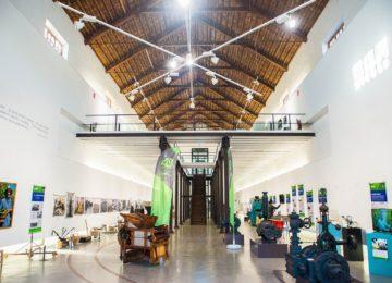 La exposición 40 años de agricultura de Grupo La Caña se traslada a Granada