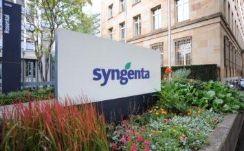 Syngenta anuncia que acelerará su innovación para abordar desafíos de un mundo cambiante