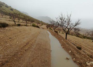 Regeneración del suelo y aprovechamiento del agua en las explotaciones agrarias