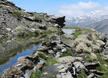Demuestran que en Sierra Nevada se encuentra el sistema de recarga de agua subterránea más antiguo de Europa