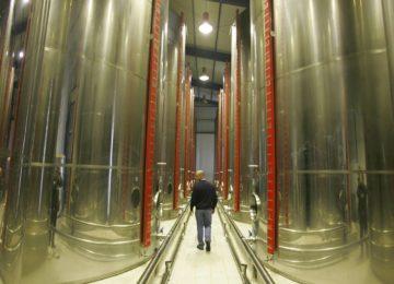 0,83 euros por tonelada y día el importe máximo de ayuda de la primera licitación del almacenamiento privado del aceite de oliva
