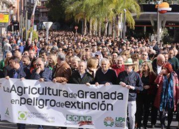 Cerca de 3.000 agricultores protestan en Motril por la crisis del sector hortofrutícola