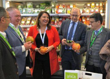 Agricultura plantea una reducción del 50% de los módulos del IRPF para el sector de frutas y hortalizas y del 100% al olivar