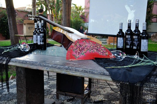 vino-granada-flamenco