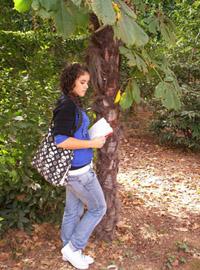 Una alumna lee una leyenda a la sombra de un árbol