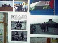 Detalle de las imágenes de la exposición