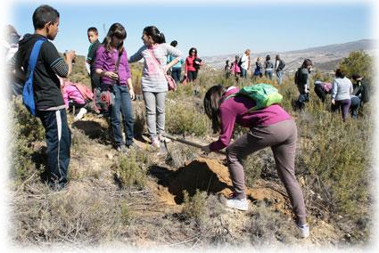 Los estudiantes preparan los hoyos para plantar especies autóctonas /J.A. SANCHEZ LUJAN