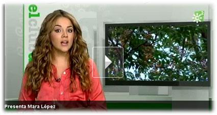 Mara López, la joven presentadora de este espacio educativo