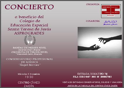Cartel del concierto solidario