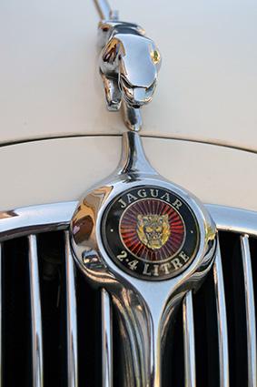 luis-vilaplanas-y-su-jaguar-3-logo