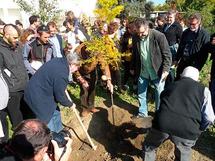 Plantación de un granado conmemorativo de la firma del pacto intervegas