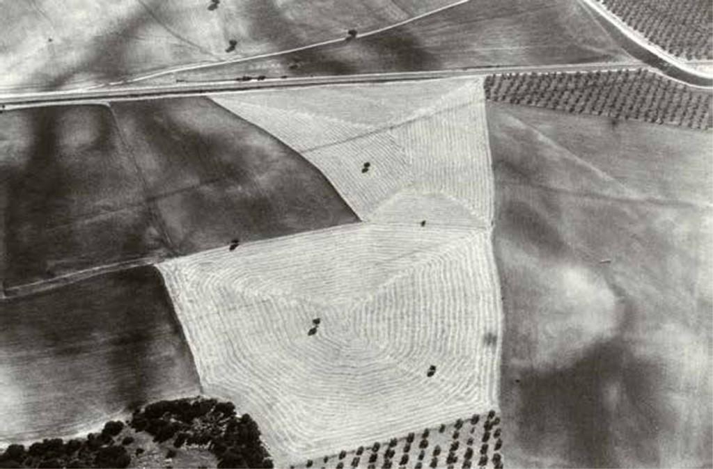 El universo rural de Javier Algarra