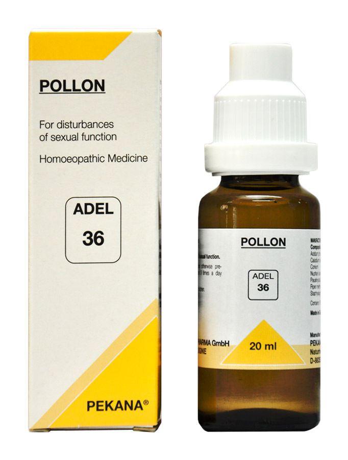 bolardo-pollon